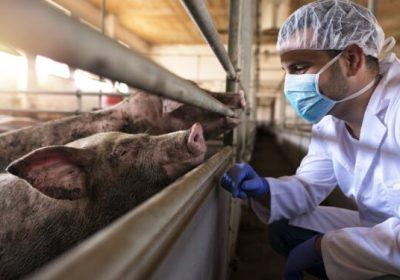 Drosten Schweinegrippe Fehleinschätzung